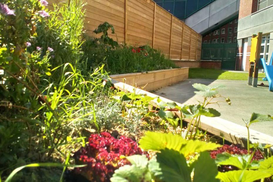 jardin canailles